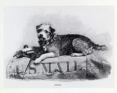 Owney, the dog